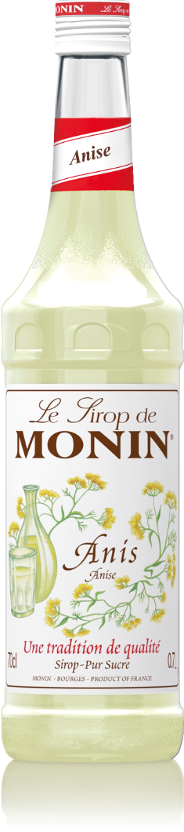 MONIN Anise syrup 70 cl